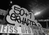 01. Spieltag | BVB - Werder Bremen